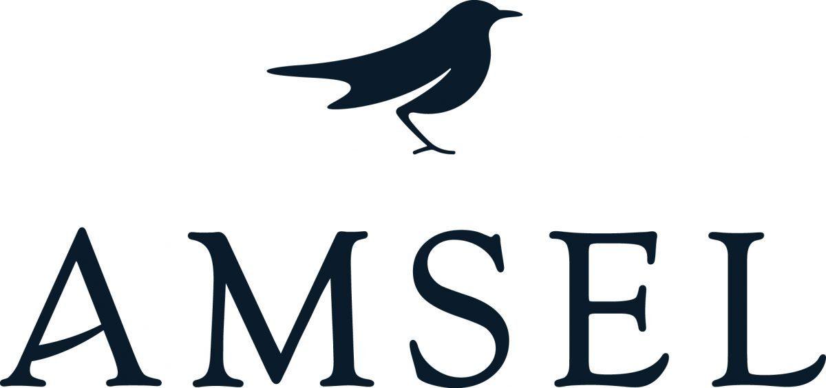 logo_amsel_blue_4c_cmyk